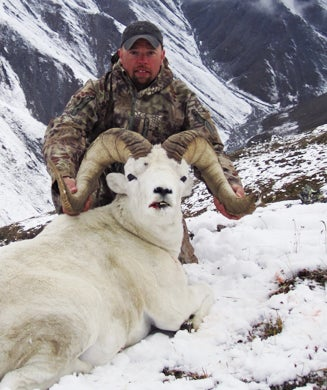 Hunting Alaska: DIY Dall Sheep in the Brooks Range