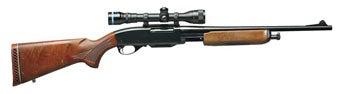 deer gun