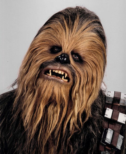 Is that a wookie pelt on your floor?