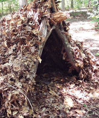 Survival Shelters: 15 Best Designs and How to Build Them