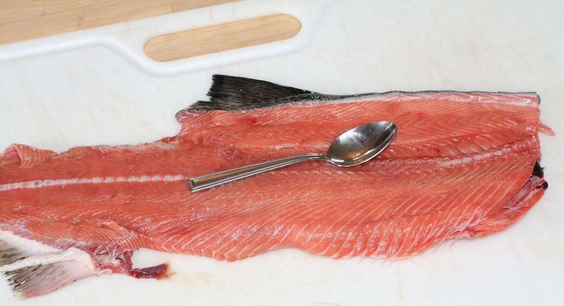 salmon fillet, salmon meat, salmon fishing, salmon recipe, cooking salmon