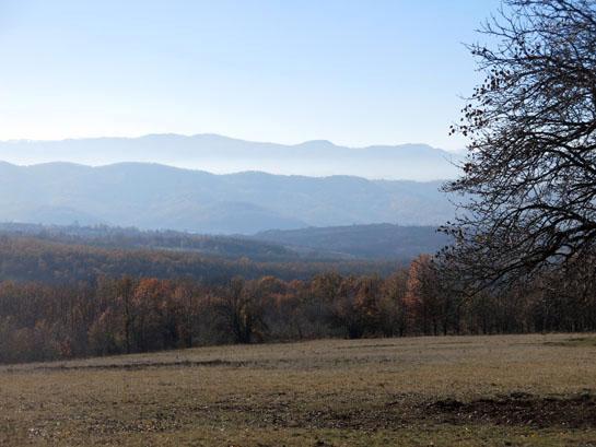 httpswww.outdoorlife.comsitesoutdoorlife.comfilesimport2014importBlogPostembedbulgarianboar_07.jpg