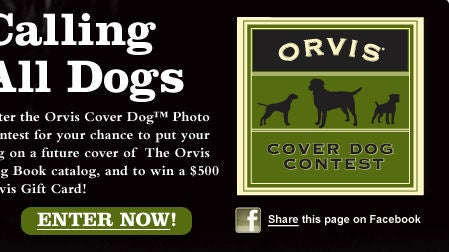 Orvis Cover Dog Contest