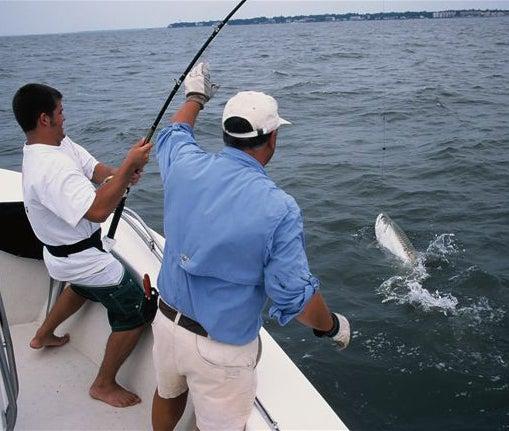 httpswww.outdoorlife.comsitesoutdoorlife.comfilesimport2014importImage2009photo7FINAL_9_NE_Florida_2_0.jpg