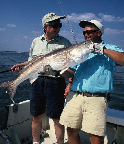 httpswww.outdoorlife.comsitesoutdoorlife.comfilesimport2014importImage2008legacyoutdoorlifebob_mcnally_redfish_6.jpg