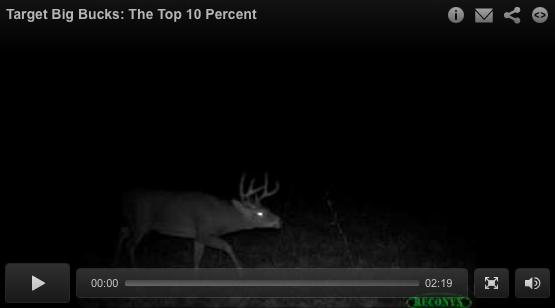 Target Big Bucks: The Top Ten Percent