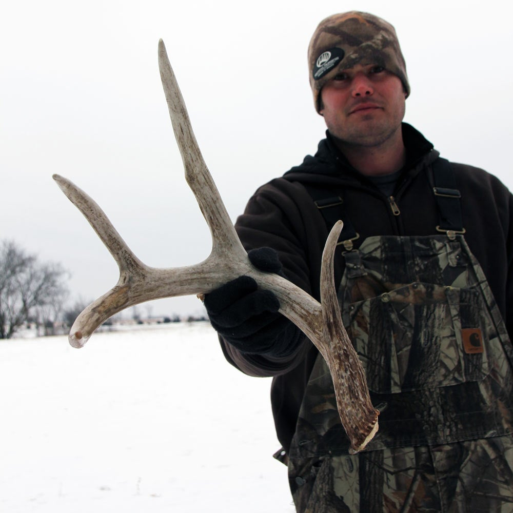 hunting shed antlers