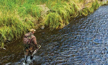 Why Some Hunters Are Choosing This Alternative to Annual Hunting Leases