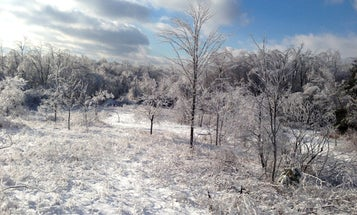 5 Ways To Improve Your Hunting Property In The Dead of Winter