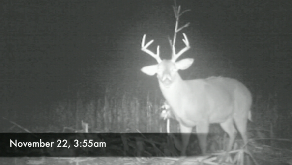 The Rut Is Winding Down: Time to Change Tactics
