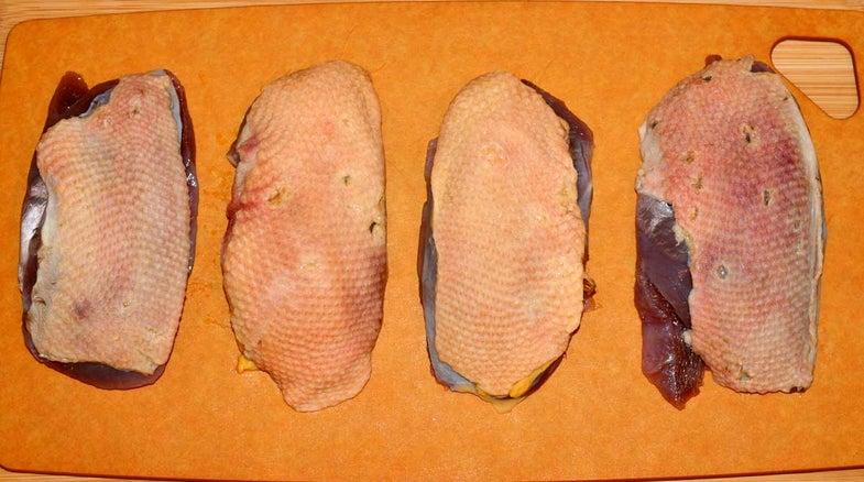 wild duck breast