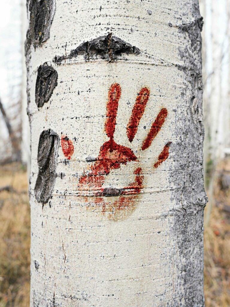 bloody handprint on tree