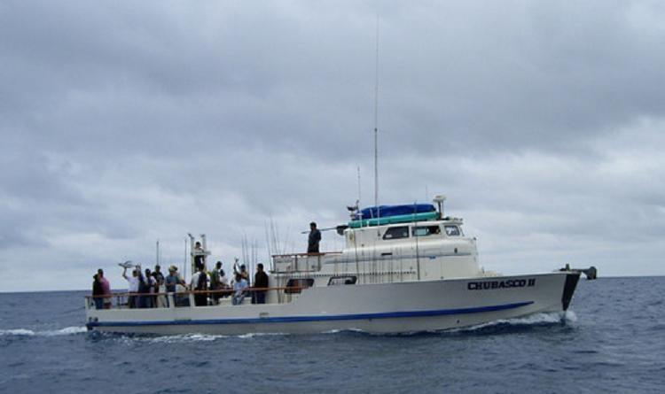 Humboldt squid fishing