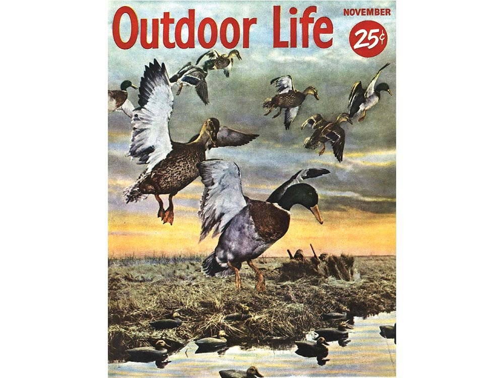 November 1953 cover of Outdoor Life