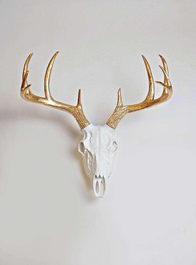 value of deer antlers