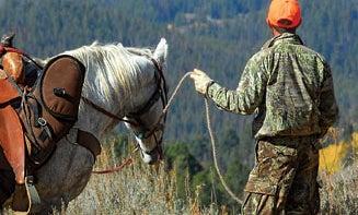 Horseback Riding Tips for Hunters