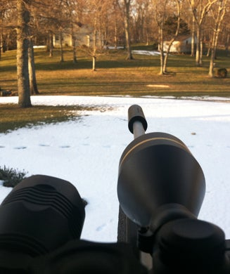 Confessions of a Sharpshooter: How a Deer Cull Actually Works