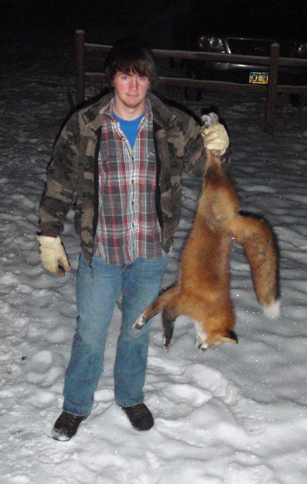 4 Tips for Trapping Foxes and Coyotes