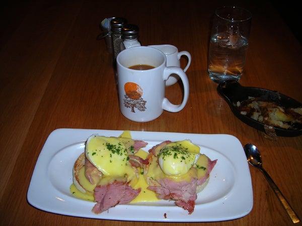 httpswww.outdoorlife.comsitesoutdoorlife.comfilesimport2014importImage2011photo100132157916_The_very_best_eggs_Benedict_ever.jpg