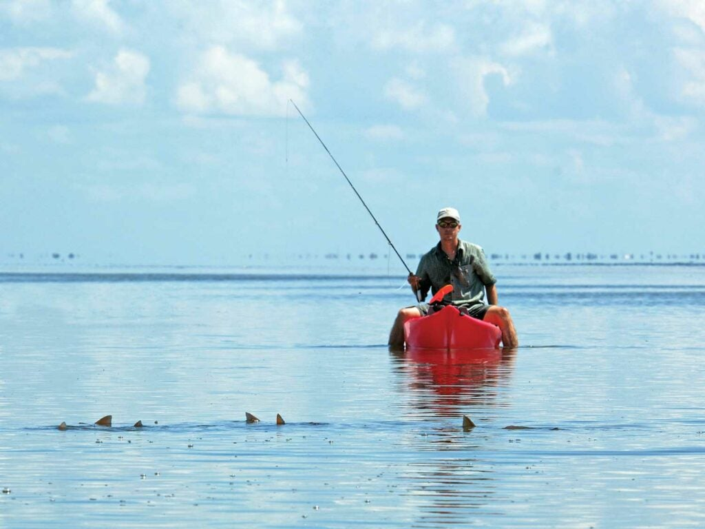 red fishing in florida