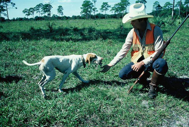 httpswww.outdoorlife.comsitesoutdoorlife.comfilesimport2014importImage2009photo713._Louisiana.jpg