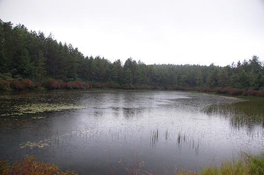 Public Land: Hunting and Fishing in Massachusetts