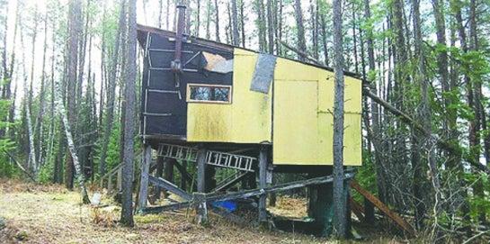 Treestands Gone Wild: Minnesota Hunters Build Deer Fort on Public Land