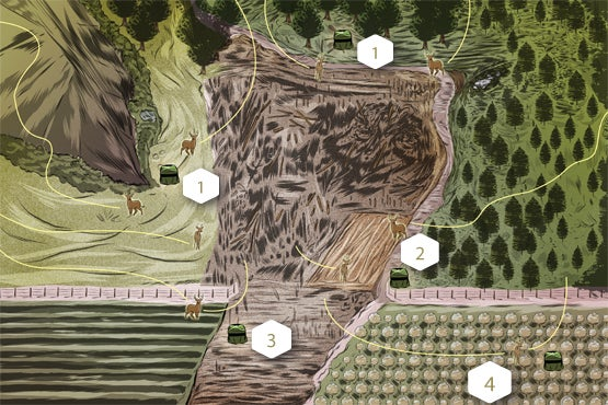 4 Situations When You Should Use a Ground Blind for Bowhunting Whitetails