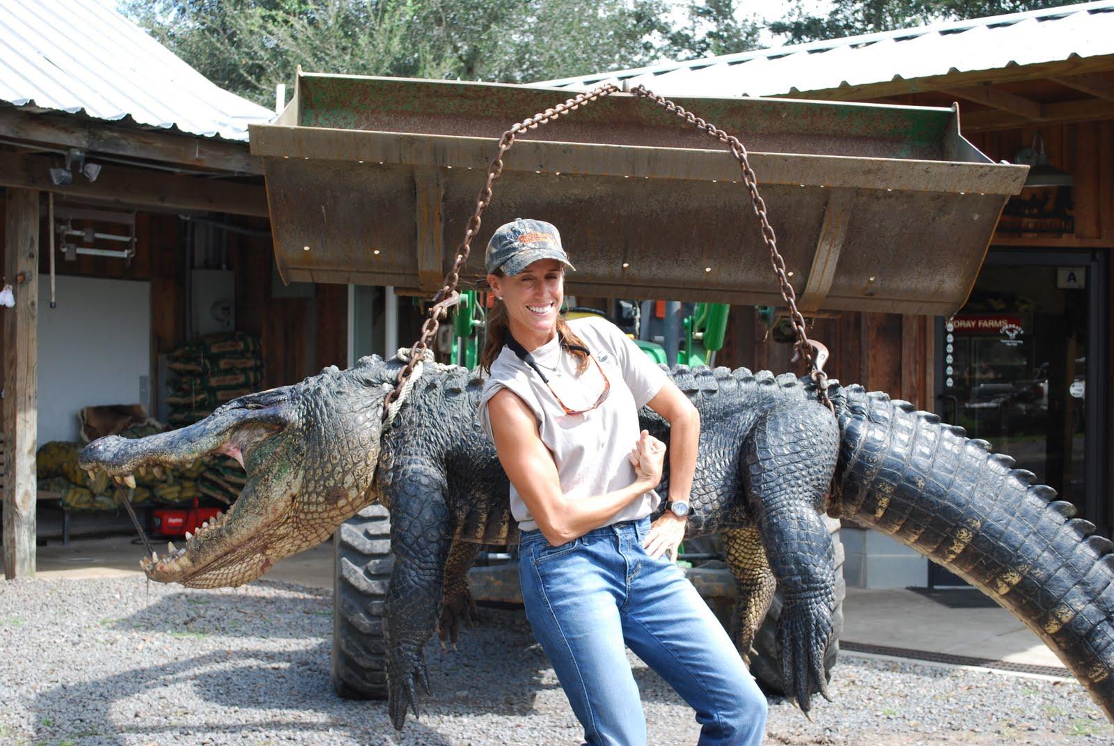 Giant Gators In SC