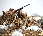 How to Shoot Better from a Layout Blind