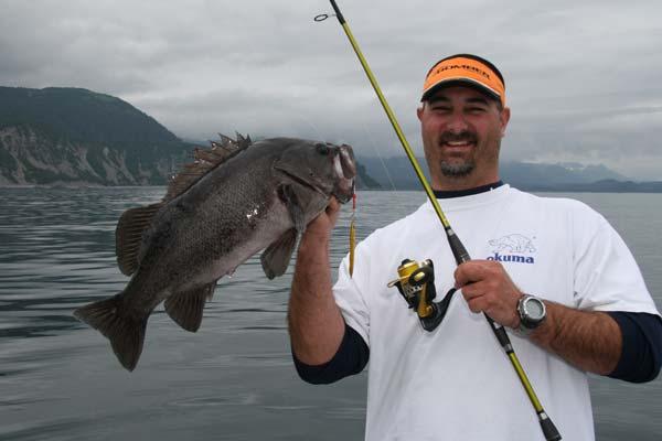 httpswww.outdoorlife.comsitesoutdoorlife.comfilesimport2014importImage2010photo30010140-1009alaska_1450-rockfish.jpg