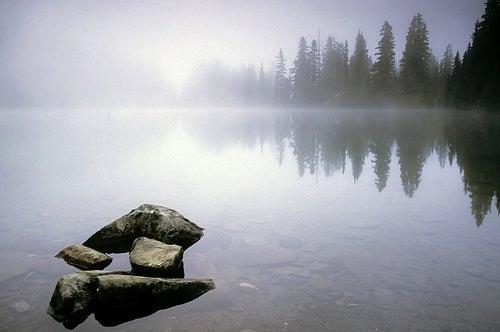httpswww.outdoorlife.comsitesoutdoorlife.comfilesimport2014importImage2010photo300108_4.jpg