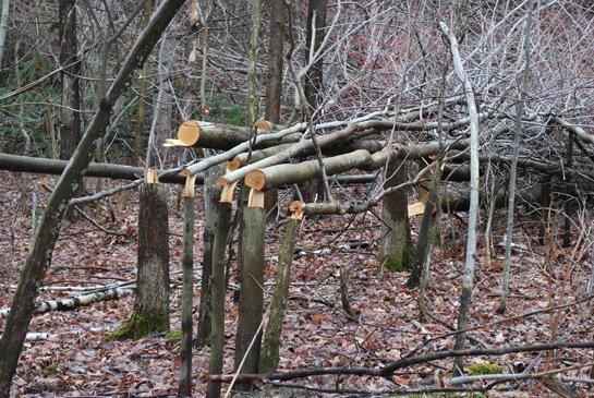 httpswww.outdoorlife.comsitesoutdoorlife.comfilesimport2014importBlogPostembedfoodplot_1.jpg
