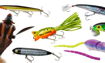 10 Best Topwater Lures For Bass