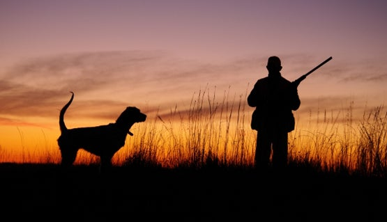Hunters Beware: CA Passes Bill Banning Hunting Bears and Bobcats With Hounds