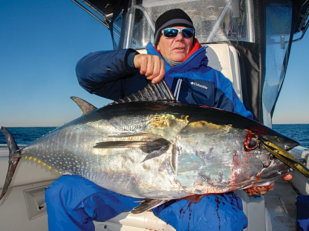 Bluefin fishing with stickbait lure
