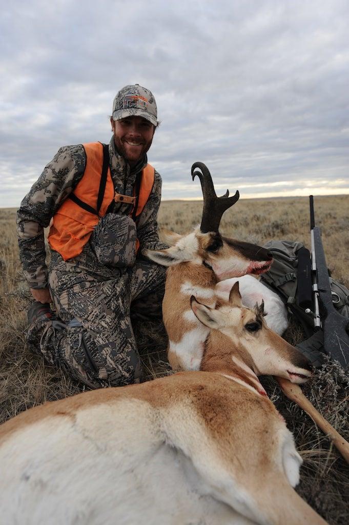 Montana Antelope