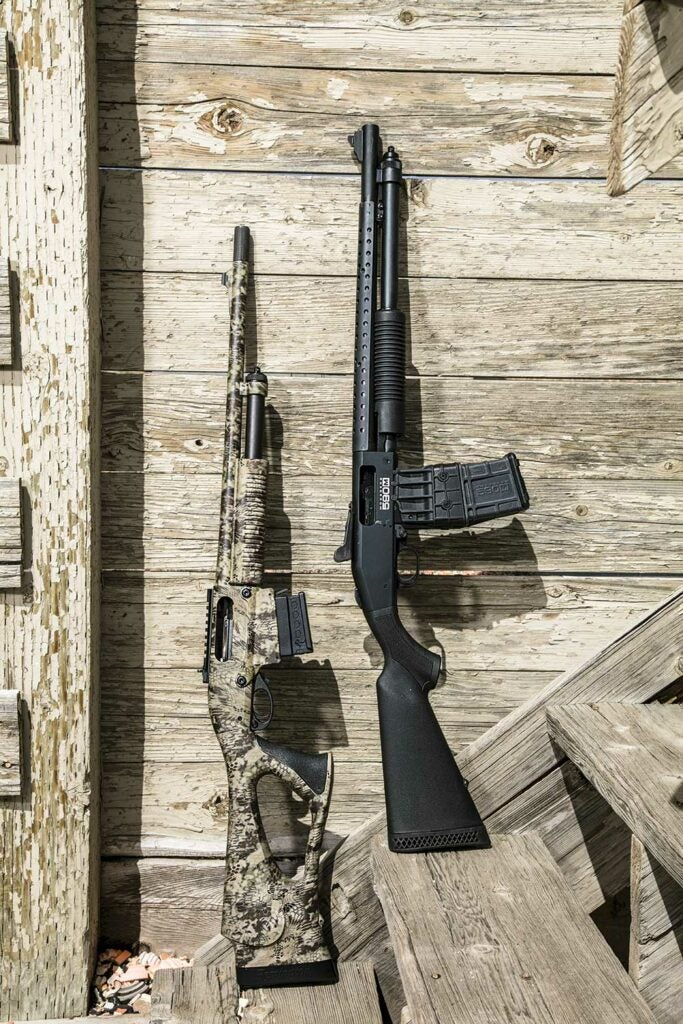 two shotguns on the wooden steps