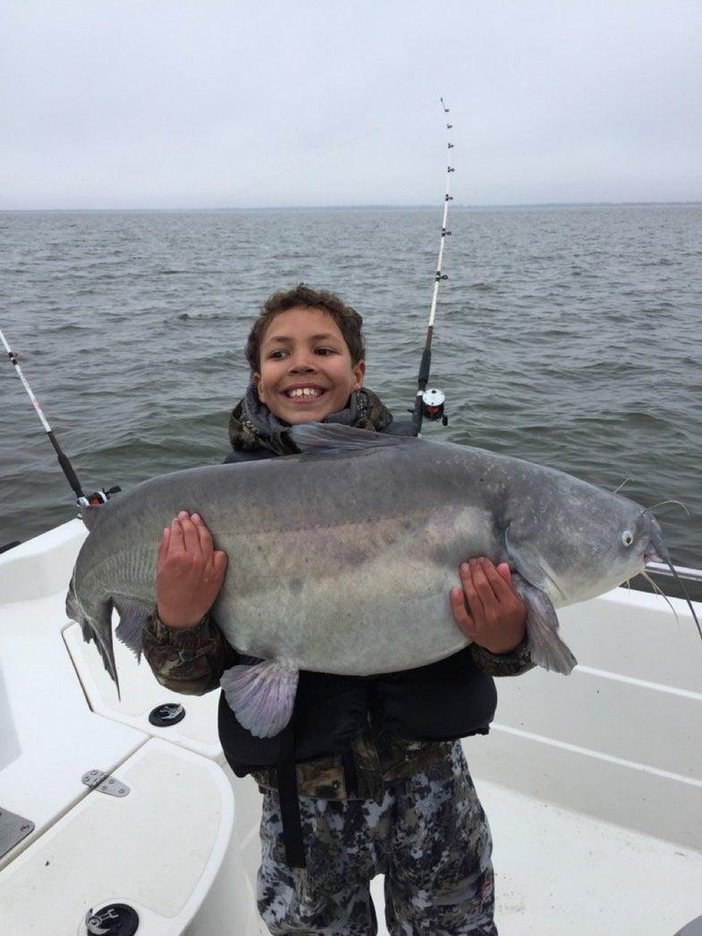 world record catfish