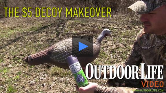 turkey decoy