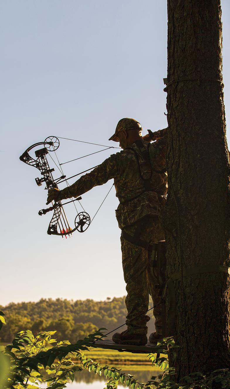 hunting early season deer