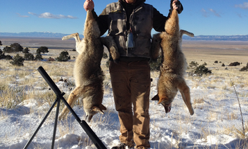 5 Rules for Setting Up to Call and Kill Predators
