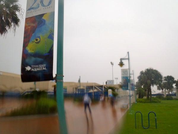 httpswww.outdoorlife.comsitesoutdoorlife.comfilesimport2013images201009slide35_0.jpg