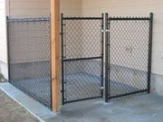 Simple Fixes for a Cleaner and Safer Dog Kennel