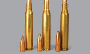 3 Versatile .25/06 Loads for Hunting Big Game and Predators
