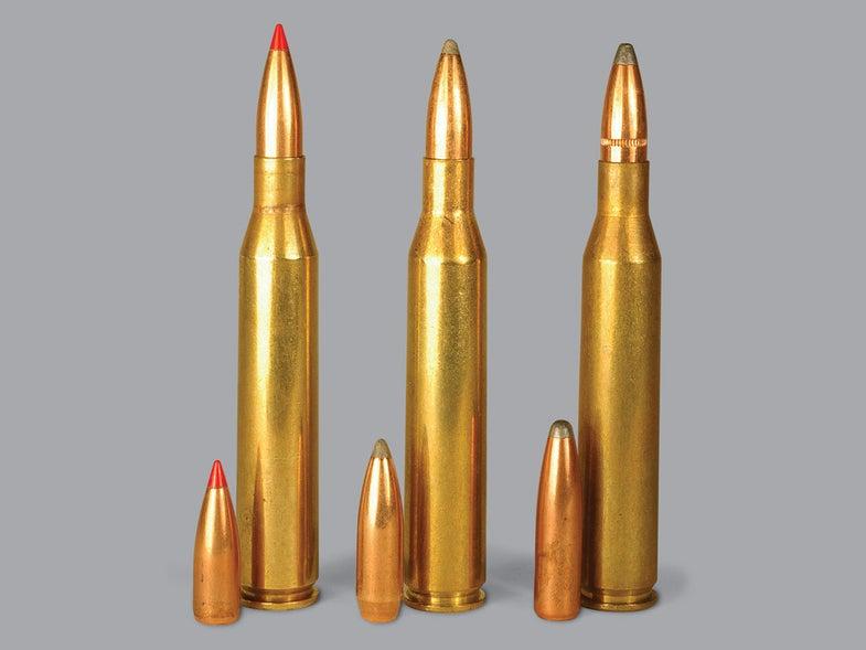 V-Max, Sierra GameKing, Nosler Partition ammo