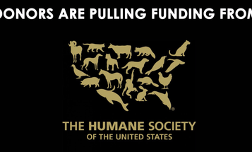The CEO of the Humane Society of the United States Resigned—Here's Why It Matters