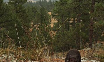 Tips to Save Your Feet When Covering Lots of Ground on Your Next Hunt