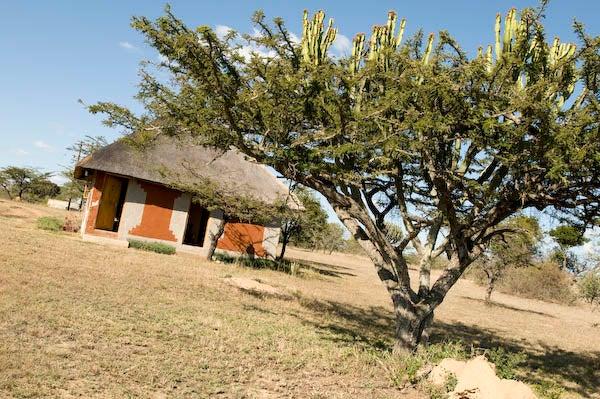 httpswww.outdoorlife.comsitesoutdoorlife.comfilesimport2014importImage2009photo7_DSC6435.jpg