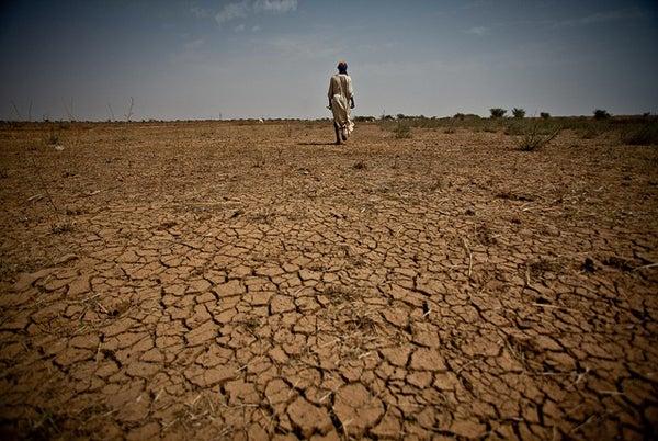 httpswww.outdoorlife.comsitesoutdoorlife.comfilesimport2013images20121203_African_Sahel_Drought.jpg